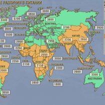 Карта качества питания