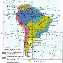 Природные зоны Южная Америка