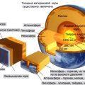 Строение Земли